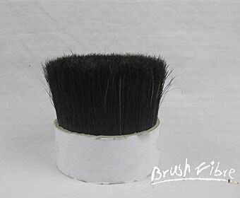 Black Boiled Bristle